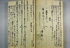 『連光寺村名主 富沢家日記』